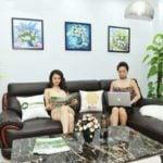 Làm sao để phân biệt các mẫu sofa cho phòng khách?