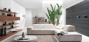 Sofa da thật nhập khẩu Malaysia có thực sự chất lượng?