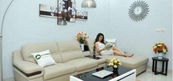 Phải đọc khi có ý định mua ghế sofa da bò cho phòng khách