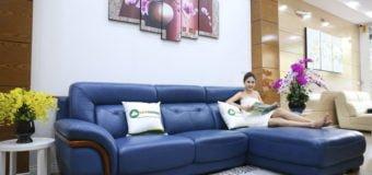 Những mẫu sofa da nhập khẩu mới về cuối năm 2017 ( Phần 1)
