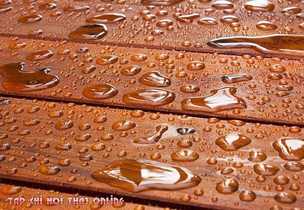 Gỗ thông có chịu được nước không?