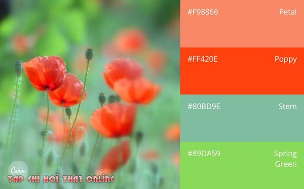 Phối màu xốp dán tường phòng ngủ phong cách mùa xuân.