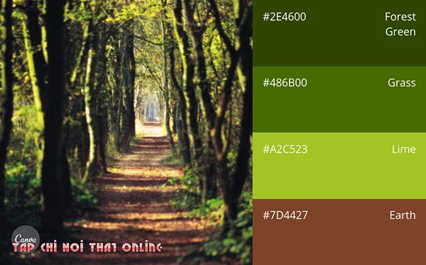 Phối màu xốp dán tường màu thiên nhiên retro.